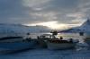 icefish-09-19