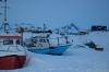 icefish-09-2