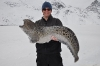 icefish-09-40