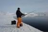 icefish-09-5